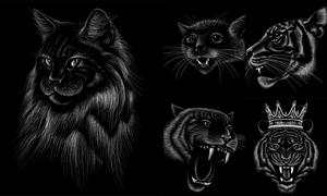 加冕的老虎等粉笔动物绘画矢量素材