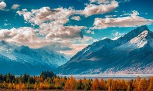 秋季雪山下的山林美景摄影图片