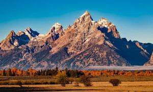 蓝天下的高原树林和山峰摄影图片