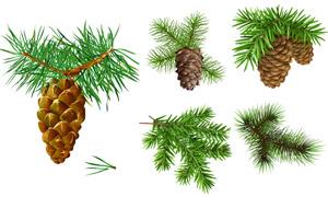 挂着果实的圣诞节树枝主题矢量素材