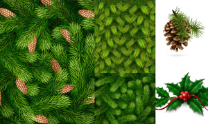 松果树枝与绿色的树叶主题矢量素材