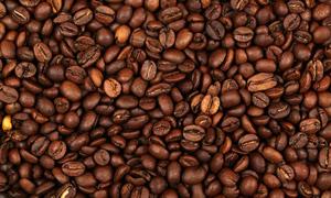 饱满咖啡豆近距离特写摄影高清图片