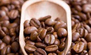 木质勺中的咖啡豆特写摄影高清图片