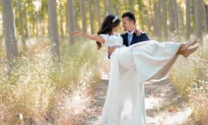 林間小道上的新娘新郎攝影高清圖片