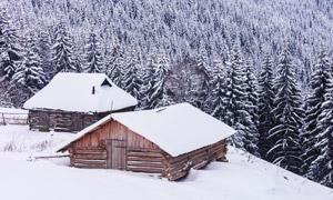 皑皑白雪下的小屋树木摄影高清图片