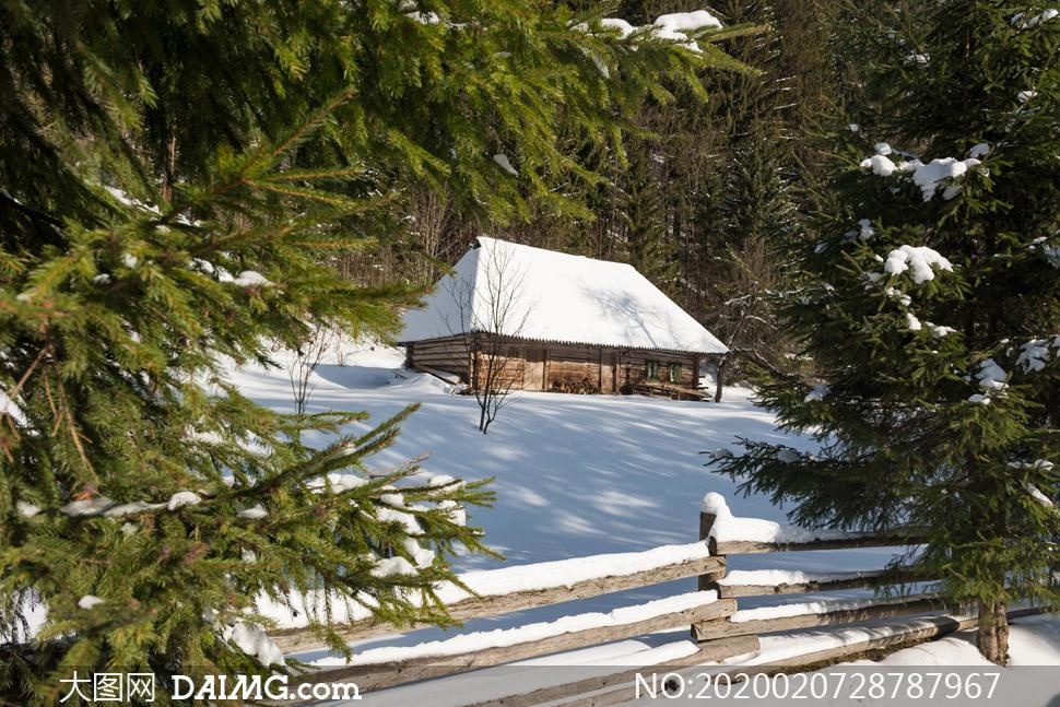 山坡上的房子树林风光摄影高清图片