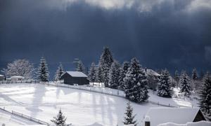 云彩下的树木小屋风光摄影高清图片