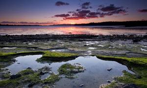夕陽下的海邊淺灘高清攝影圖片