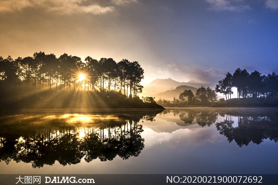 清晨阳光透过树林照射湖泊摄影图片