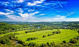 藍天白云下的草地和森林攝影圖片