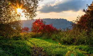 阳光下的山中景观摄影图片