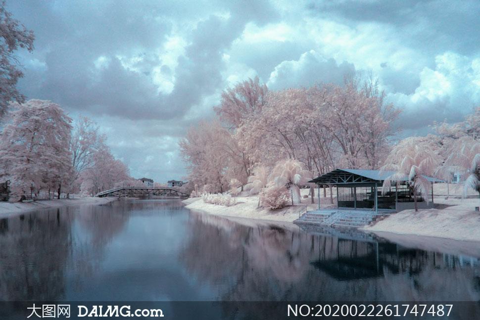 河水树木冬日雾凇美景摄影高清图片