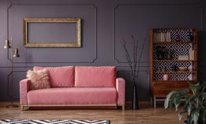 室内置物架与粉色沙发摄影高清图片