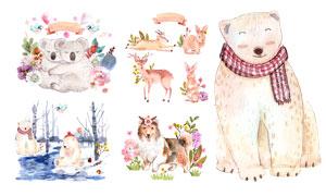 考拉熊與梅花鹿等水彩動物矢量素材