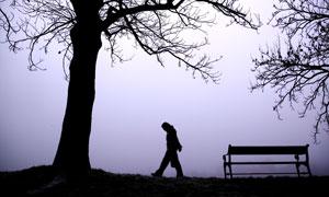大树下的长椅人物剪影摄影高清图片
