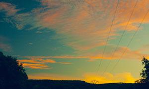 黄昏晚霞树丛自然风景摄影高清图片