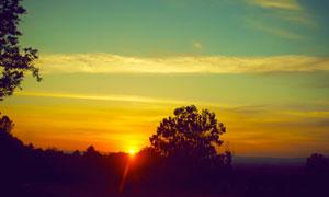 夕阳西下晚霞树木风光摄影高清图片