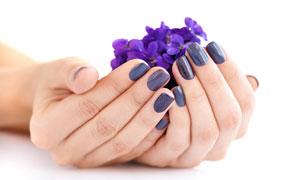 捧在手中精心呵护的花摄影高清图片