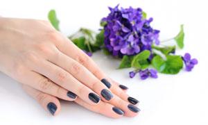 蓝色花朵与一双手特写摄影高清图片