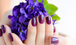 蓝色花与泛着光的美甲特写高清图片