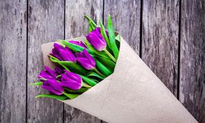 用紙包起來的郁金香花攝影高清圖片