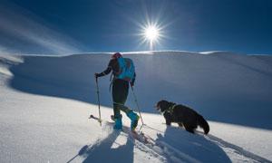 帶犬只一起登山的人物逆光攝影圖片