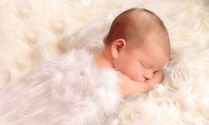 毛毯上趴著睡覺的寶寶攝影高清圖片