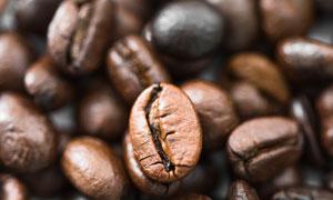 精選優質的咖啡豆特寫攝影高清圖片