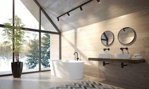 別墅房間綠植與浴缸洗手臺高清圖片
