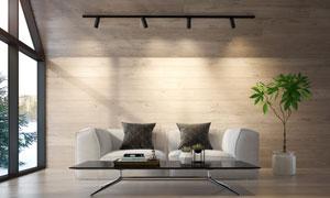 燈光照射下的沙發綠植攝影高清圖片