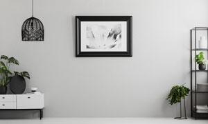 房間綠植置物架與裝飾掛畫高清圖片