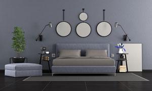 室內裝飾畫與綠植陳設攝影高清圖片