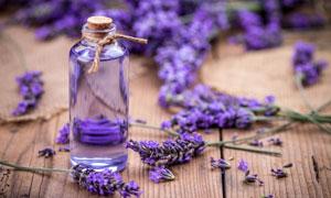 玻璃瓶与紫色的薰衣草摄影高清图片