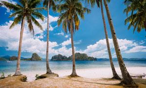 大海山峰海边椰树风光摄影高清图片