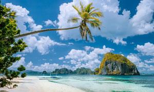 沙滩椰树与远处的山石摄影高清图片