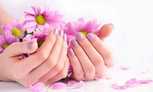 花朵與做了美甲的雙手攝影高清圖片