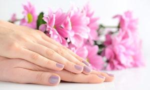 暗粉色的美甲手勢特寫攝影高清圖片