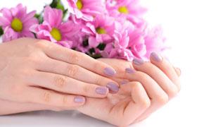 一雙玉手與粉色的花朵攝影高清圖片