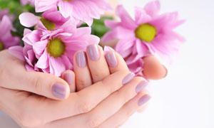 小心捧在手掌中的花朵攝影高清圖片