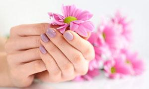 雙手拿一朵小花的情景特寫高清圖片