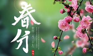 小清新主题春分海报设计PSD素材