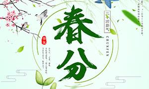 绿色清新春分节气海报设计PSD素材