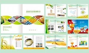 農業產品畫冊設計模板PSD素材