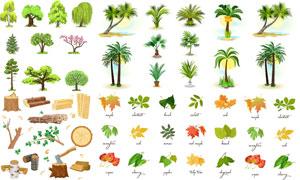 树枝木头与树叶伐木等主题矢量素材