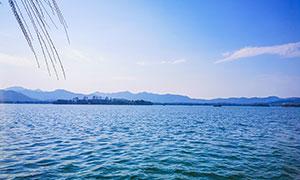 美丽的西湖湖面景观摄影图片