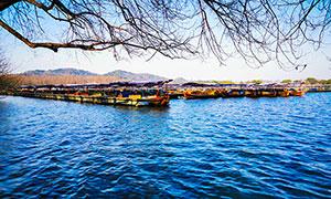 西湖景区游船摄影图片