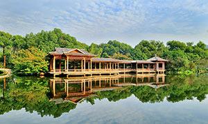 杭州西湖湖边凉亭摄影图片
