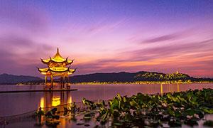 杭州西湖中的集贤亭夜景摄影图片