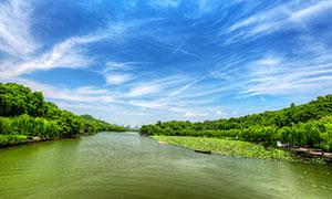 蓝天下的西湖美景摄影图片