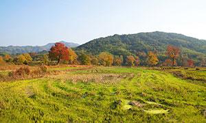 塔山村田園風光攝影圖片